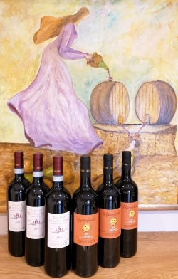 Option 20 - Rosso di Montalcino and Vignalsole (6 bottles)